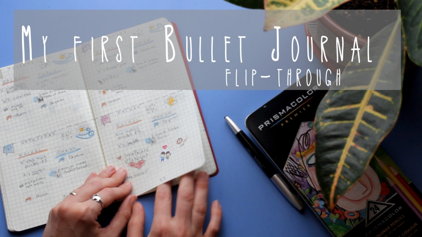 My first Bullet Journal, flip-through