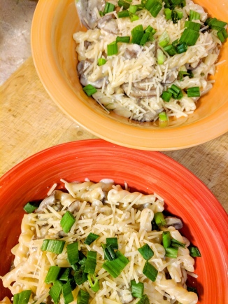 24. Creamy Dreamy Mushroom Gemelli with scallions and Parmesan (Hello Fresh)